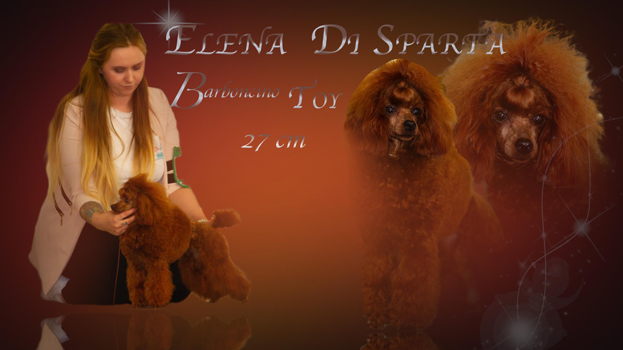 Elena di Sparta  TOY 27 CM ***ENTRA***