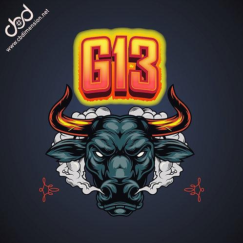 G -13 5g
