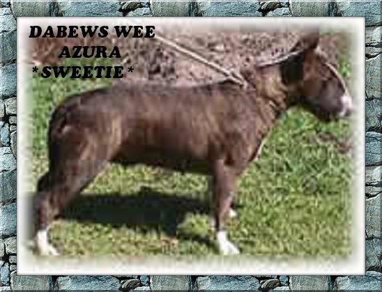 Debews Wee Azura {Sweetie}.jpg