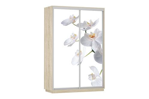 Шкаф купе Дуо 2Д Орхидея