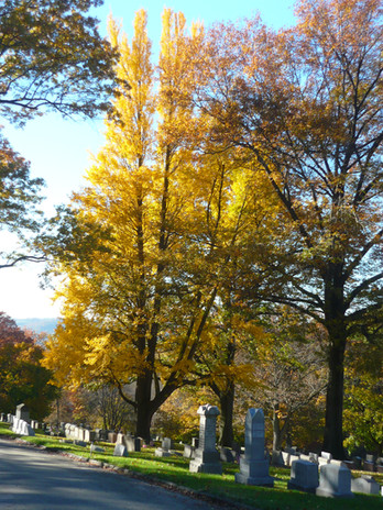 Fall at Union Dale