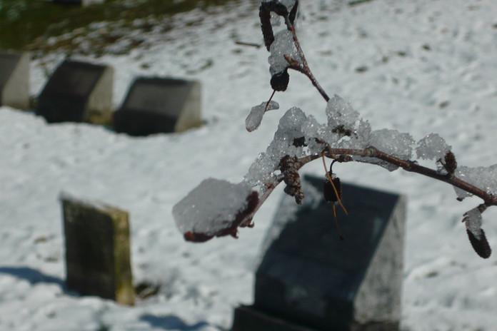 Winter at Union Dale