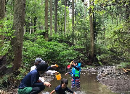 2020.9.1 かえる/苔むす森と小川遊び