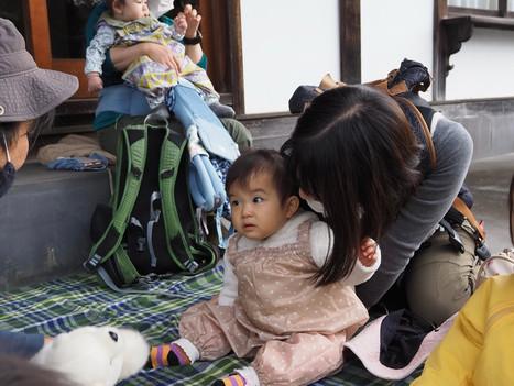 2020.11.6 青梅おたま/柚子さん、どんぐりさん、カラスウリさん