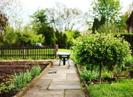 Ideální pár do každé zahrady