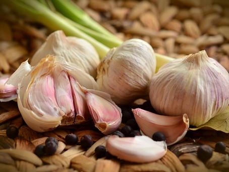 Ozimý česnek - zaručená velká úroda?