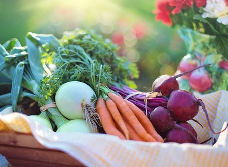 Správné uskladnění úrody na zimu
