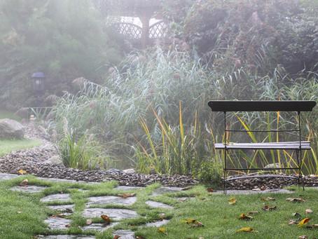 Umíte správně zazimovat zahradní jezírko?