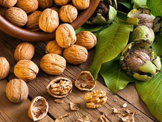 wp4198038-walnut-wallpapers.jpg