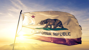 Update: Our Follow Up With Gov. Newsom