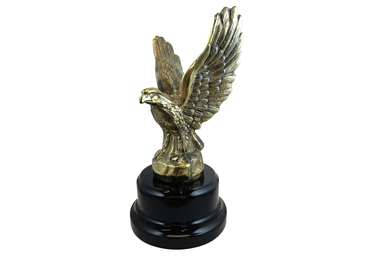 Corporate Eagle Award