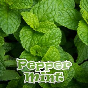 Qcig Pepper Mint 4 x 10ml