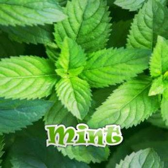 Qcig Mint 10ml Various Strengths