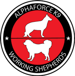AFK9 Logo.png