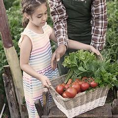 AppTerroir enfant portant des légumes