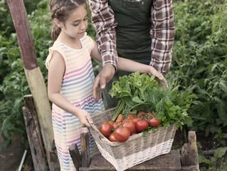 Como fazer meu filho ter uma alimentação mais saudável?