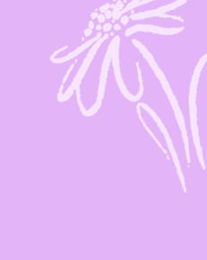 Kasse-blomst-hvid.jpg