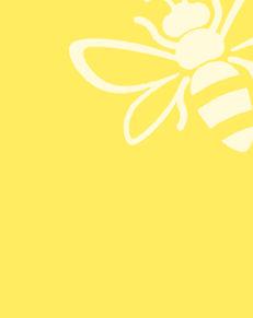 Kasser-gul-bi.jpg