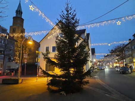 Schötmaraner Weihnachtsbeleuchtung