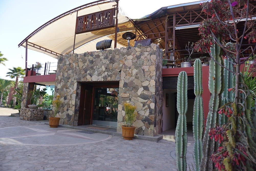HOTEL BOUTIQUE. FUEGO COCINA DEL VALLE. FOOD. CACTUS. LOBBY. BAJA WINE COUNTRY. MEXICO. RESTAURANT.