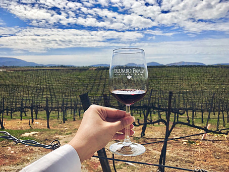 Temecula Wine Country: A Tour with WINEormous