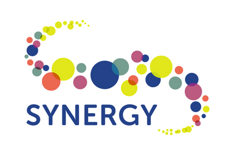 Synergy AGM - June 15th