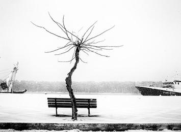 Updated gallery: photographer Kotzabasis Petros