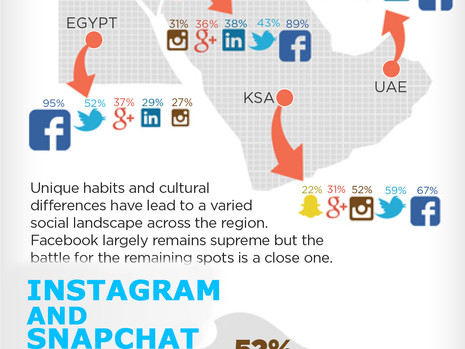 Social Media in the Middle East