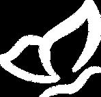 Logo_DRES.png