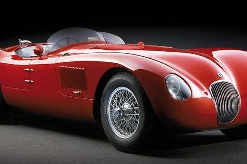 Jaguar C Type - 1952