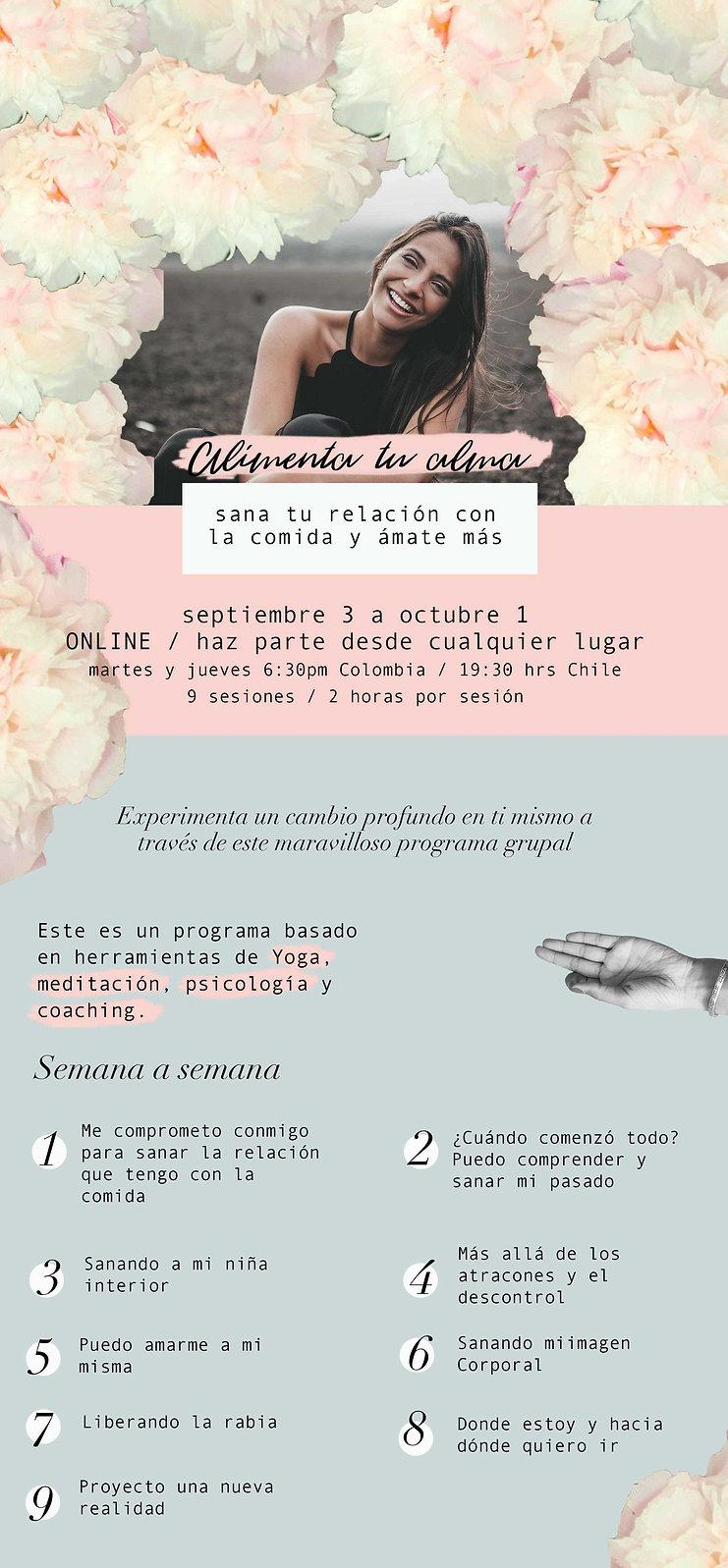 web Flyer 1 alimenta online.jpg
