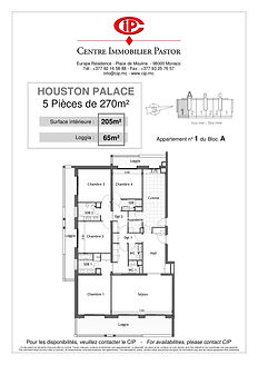 Houston Palace 5 pieces 270 m2 A-1
