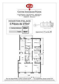 Houston Palace 5 pieces 270 m2 C-1