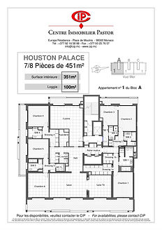 Houston Palace 7 pieces 451 m2 A-1