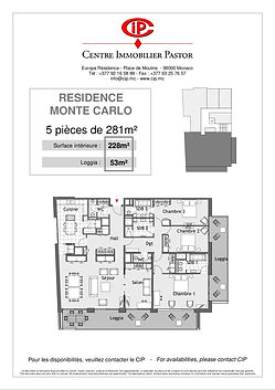 Residence Monte Carlo 5 pieces 281 m2 ty