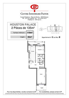 Houston Palace 2 pieces 135 m2 B-2