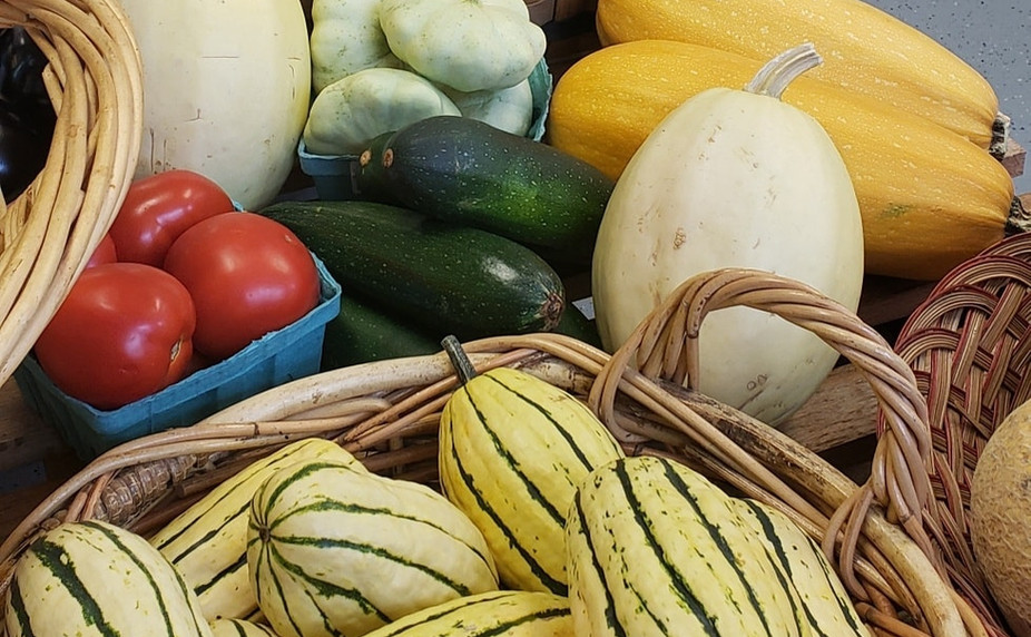 Many types of squash