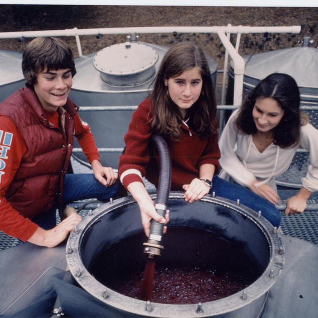 Winiarski's children doing a pump over at Stag's Leap Wine Cellars