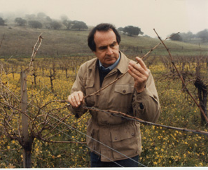 Warren Winiarski tending to vines