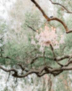 JessicaGMangiaPhotography-1.jpg