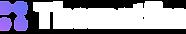 thematiks-logo-white.png