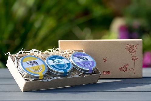 Seedball wildflower tins gift set