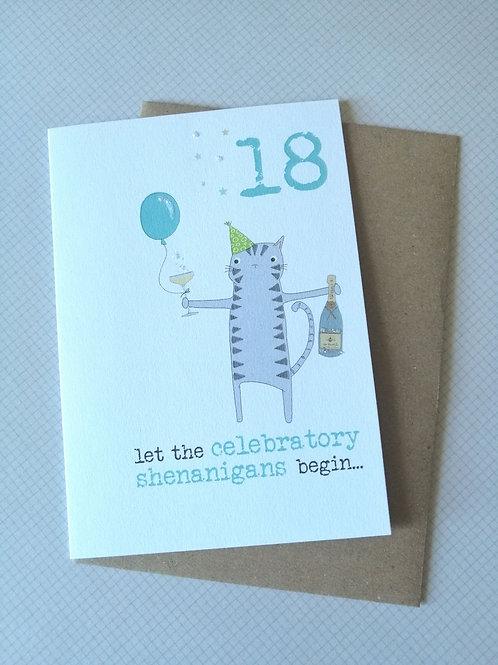 Celebratory Shenanigans Special Birthday cards 18, 21, 30 etc WW534