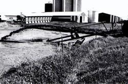 pumpinonfarm.jpg