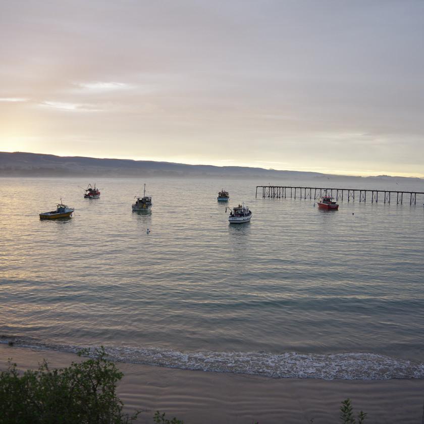 Moeraki Harbour