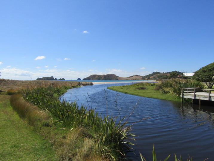 New Zealand - the Coromandel