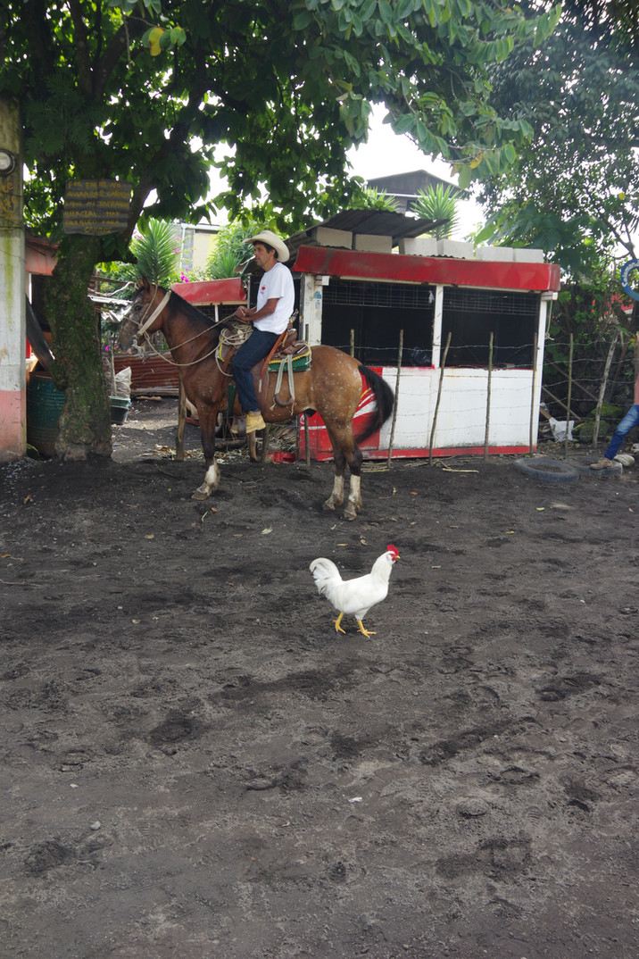 Guatemala Part 4 - Antigua