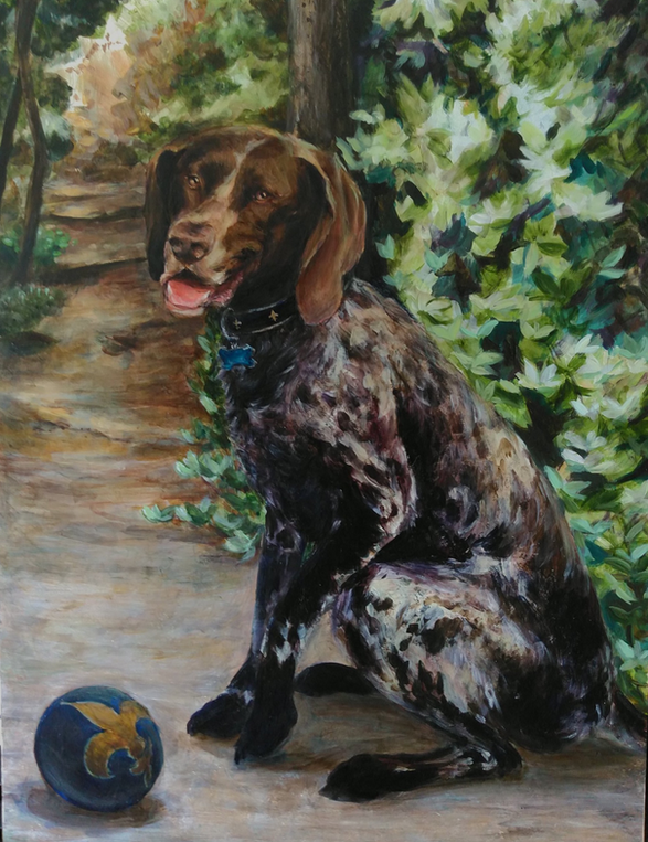 "Beauregard Von Godfrey ""Beau"" German Short Hair Pointer"