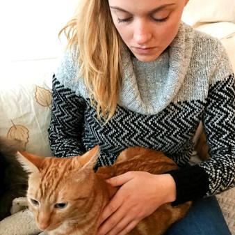 Séance d'ostéopathie sur un chat.