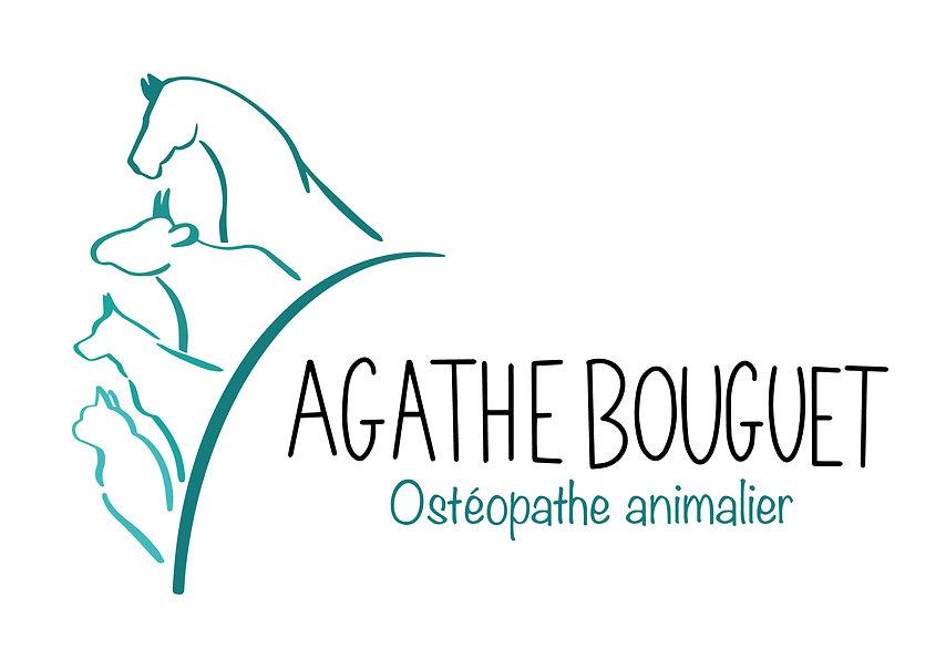 Logo Agathe Bouguet - Ostéopathe animalier